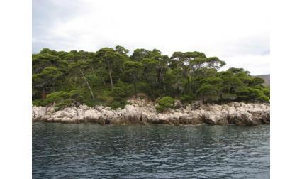 Остров Локрум - Дубровник