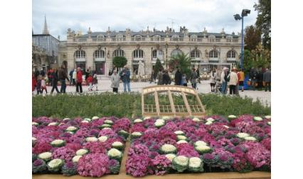 Нанси - площад с цветя