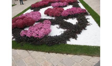 Оформени цветя в Нанси
