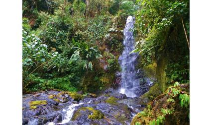Парк Амистад, Коста Рика