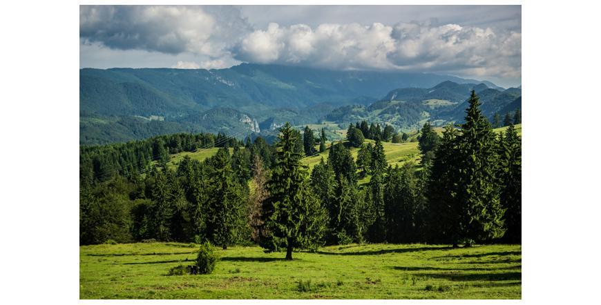 Трансилванското плато